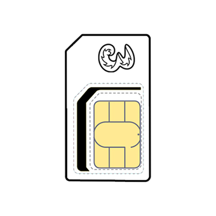 Data Sim (12 Month Contract)